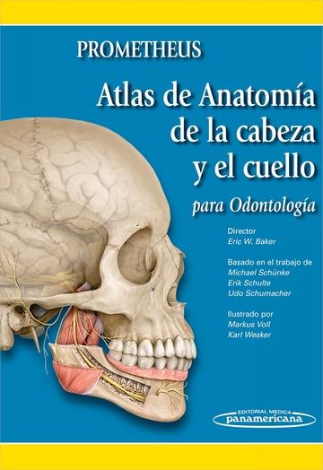 Prometheus . Atlas de Anatomía de la Cabeza y el Cuello Para ...
